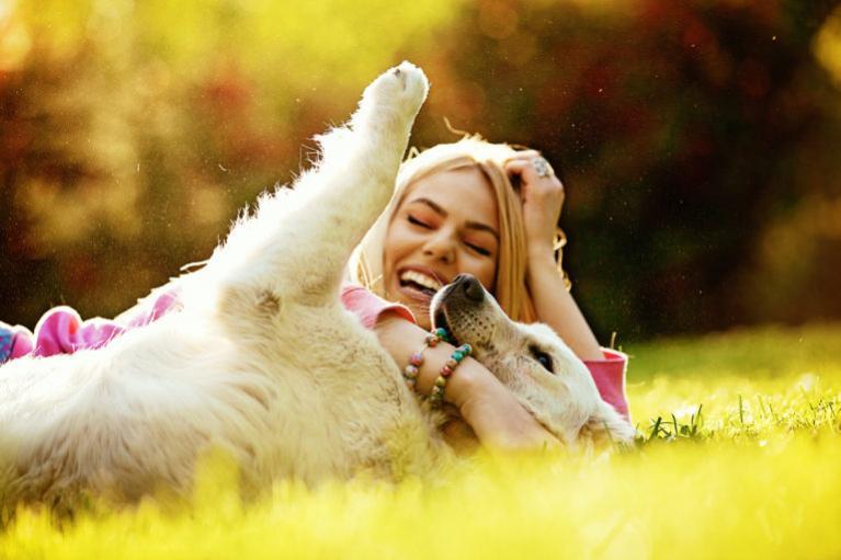 zakaj nam psi polepšajo življenje