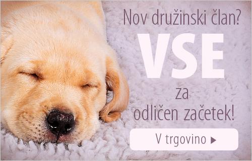 2018_01_Puppy_Mood_500x320_SI