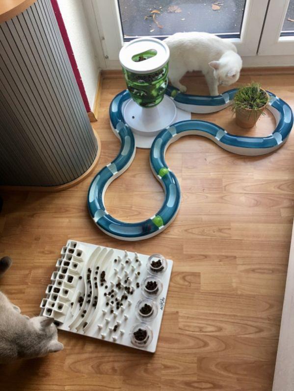inteligente igrače za mačke