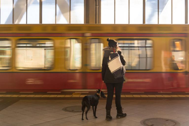 Potovanje z vlakom s psom