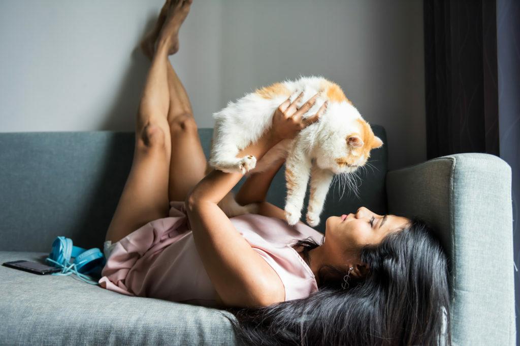 Socializacija mačk
