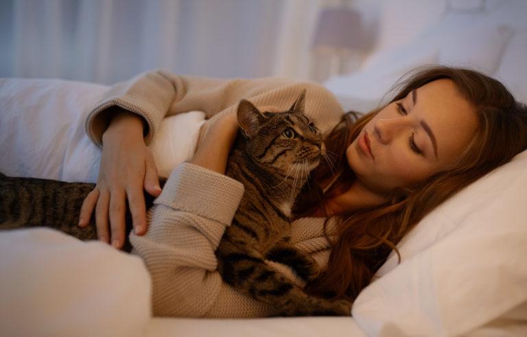 Mačka mijavka ponoči: Zakaj in kaj naj storim?